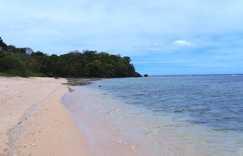diving philippines apo reef pandan