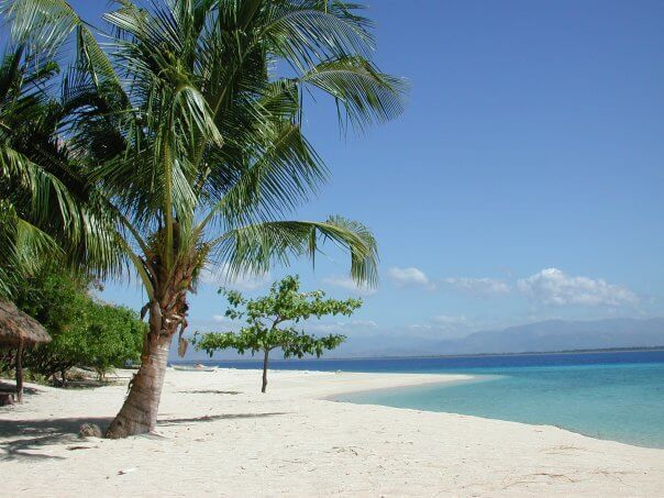 I left my heart in the Philippines: diving in Pandan Island, Sablayan and Apo Reef