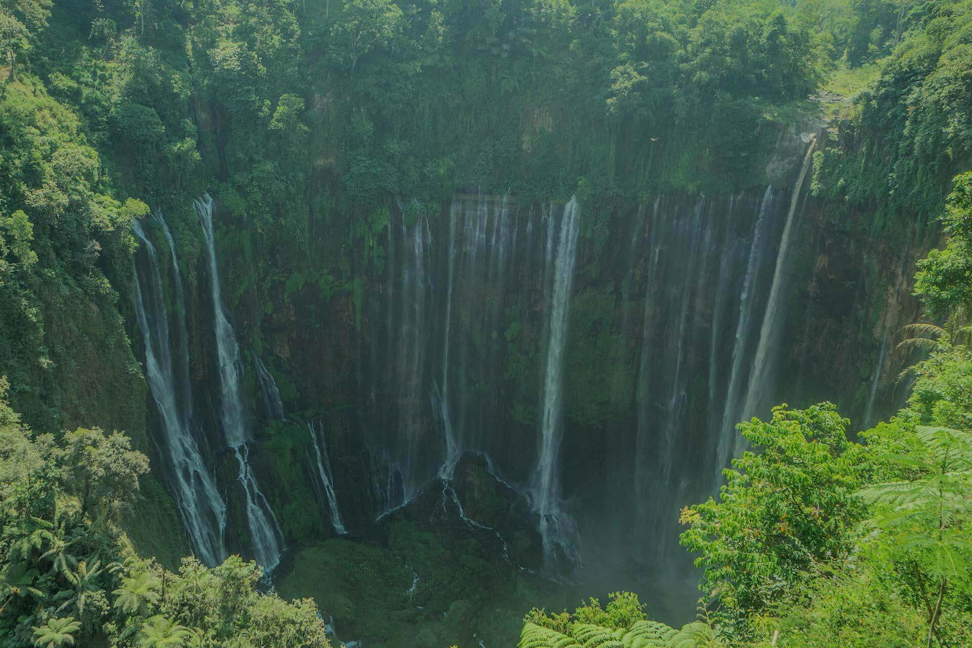 where to go in indonesia jungle waterfall