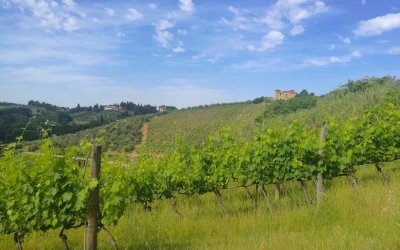 Tuscany from Rome: seven ideas for a fulfilling trip